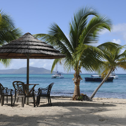 sandy beach with palms in the Grenadines